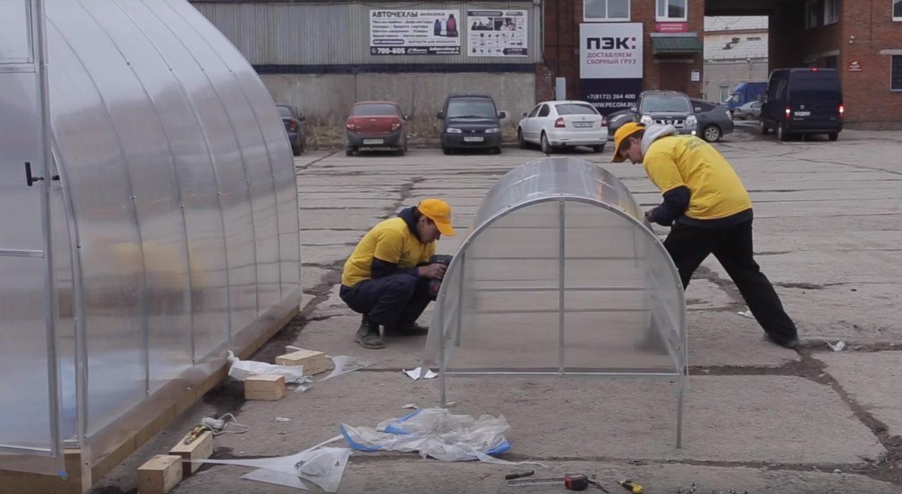Теплица из поликарбоната сотового: какие есть плюсы и минусы конструкции, виды сооружений