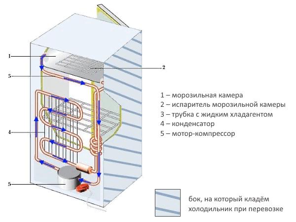 Внутреннее устройство холодильника