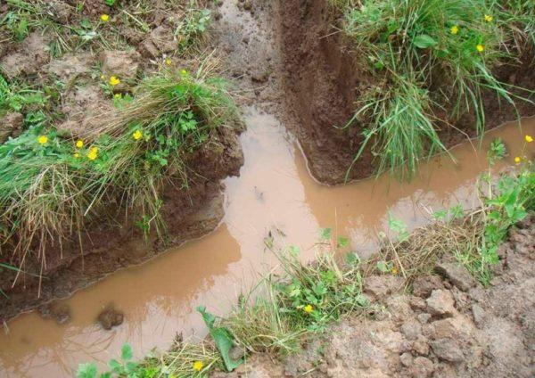 Сброс воды с участка в общую канаву