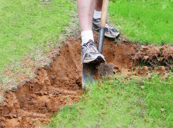 Глинистая почва является водоупором