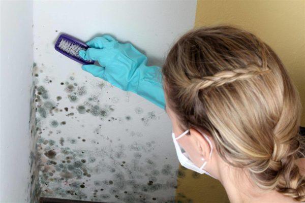 Во время уборки следует использовать различные средства защиты, а по завершению процесса их утилизируют