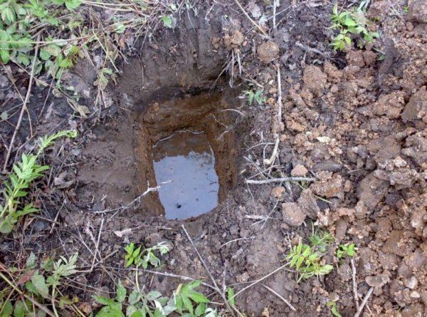 Близкий уровень воды в грунте – повод для устройства искусственной дренажной системы