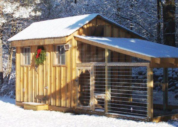 Правильный выбор места для птичника – залог комфорта для птиц и их хозяев