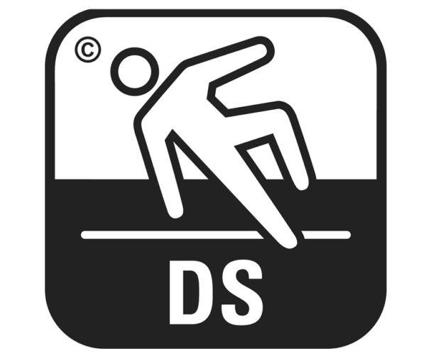 Аббревиатура DS