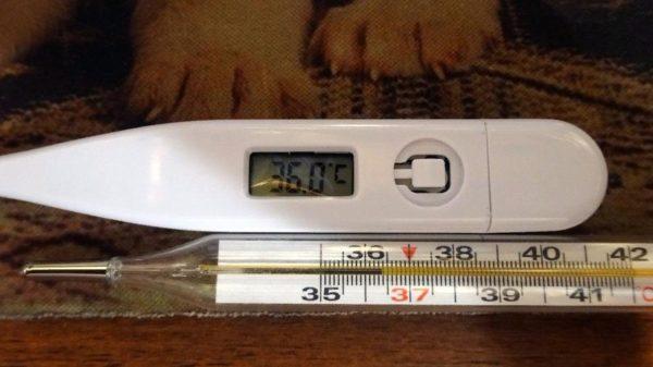 Лучше положить термометр на поверхность стола такой же высоты