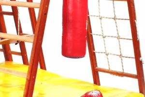 Боксерская груша