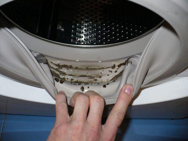Грибок в ванной: 100 фото избавления от опасных микроорганизмов
