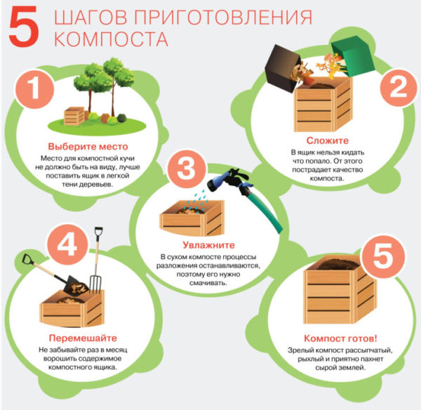 Этапы приготовления компоста