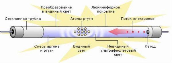 Принцип работы и строения люминесцентной лампы